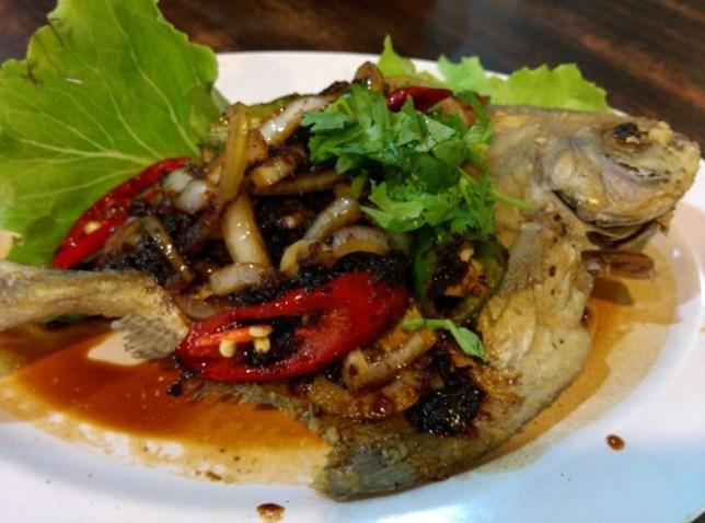 Ivins10 Singapore-Ivins南洋特色菜 不起眼的小餐廳 道道精采