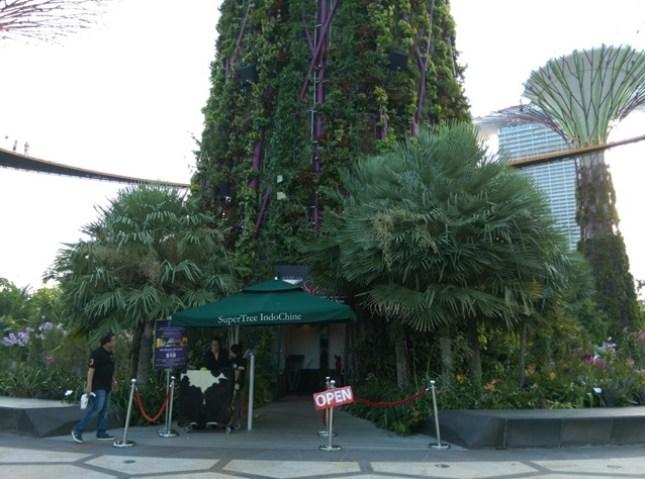 gardenbythebay02 Singapore-IndoChine-Gardens by the Bay中SuperTree上享受美食享受美景
