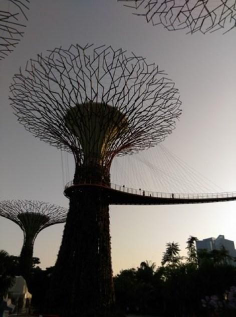 gardenbythebay03 Singapore-IndoChine-Gardens by the Bay中SuperTree上享受美食享受美景