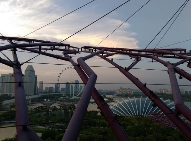 gardenbythebay12 Singapore-IndoChine-Gardens by the Bay中SuperTree上享受美食享受美景