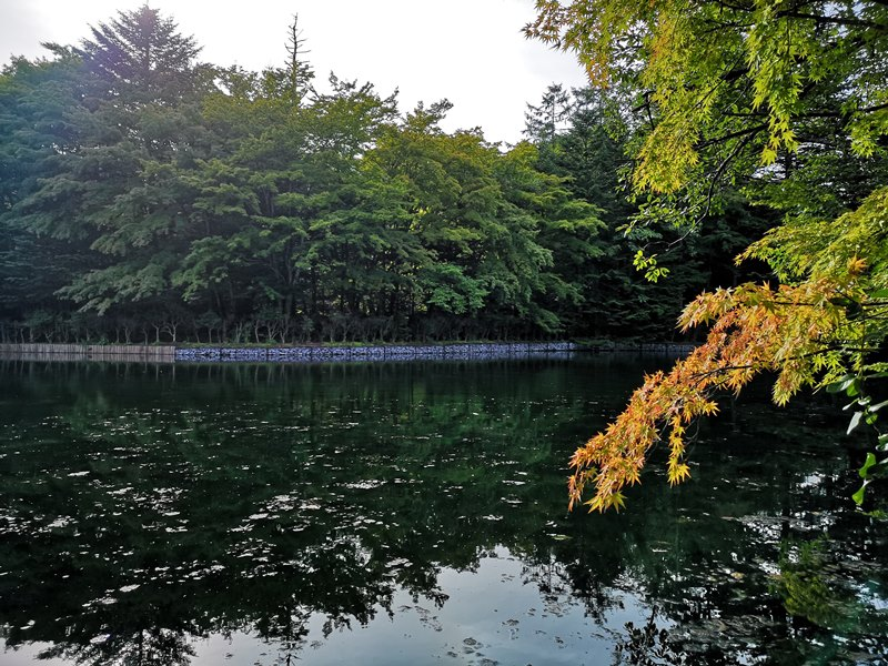 karuizawa10 Karuizawa-輕井澤輕鬆鐵馬行/聖保羅教堂/雲場池
