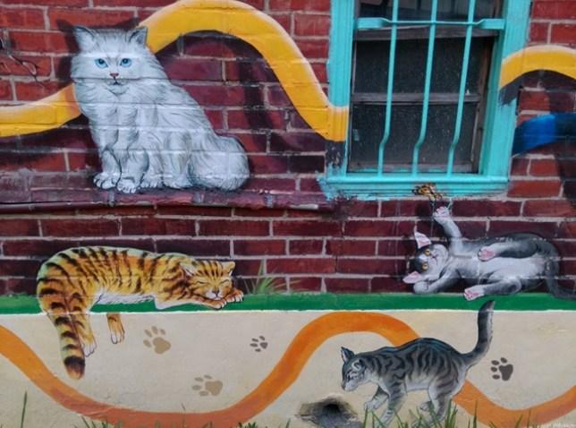 16 虎尾-頂溪 屋頂上的貓 可愛的彩繪社區