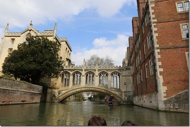 ponting16_thumb Cambridge-再見康橋 許多年後的劍橋 依舊美麗 搭船遊康河