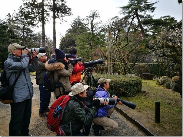 kenrokuen5020_thumb Kanazawa-日本三大名園 二訪兼六園 金澤必訪