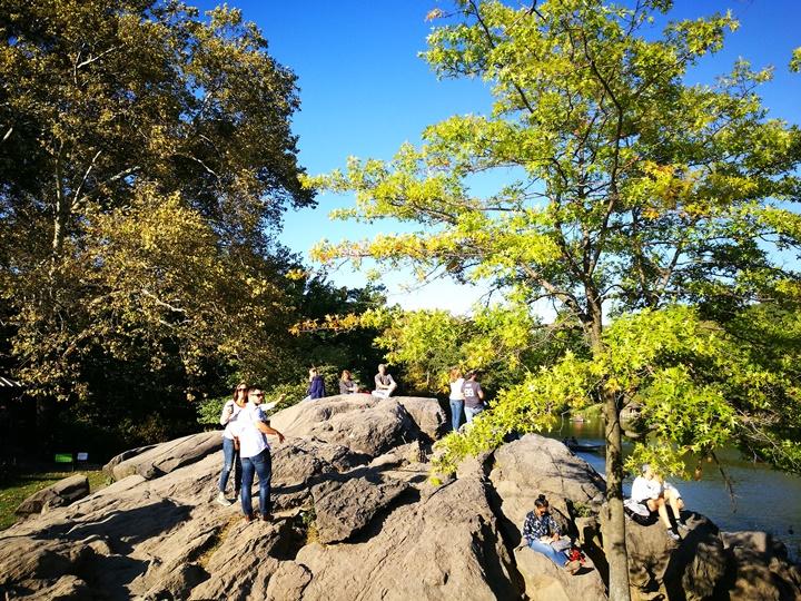 centralpark39 New York-果真大蘋果之紐約真好玩 中央公園 躺著曬太陽也愜意的好所在