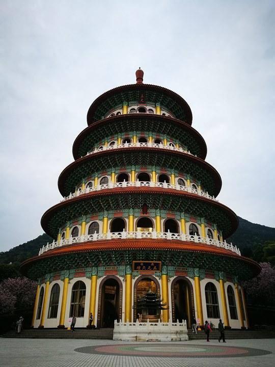 tienyuan04 淡水-晨光中綻放的櫻花 北台灣最夯賞櫻景點天元宮