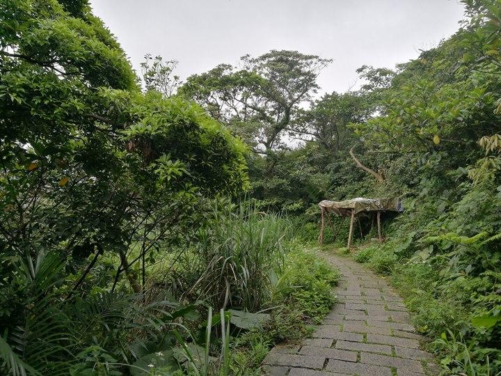 chingshanwaterfall06 石門-青山瀑布步道 輕鬆愜意舒適賞瀑布