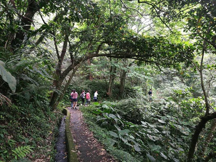 chingshanwaterfall09 石門-青山瀑布步道 輕鬆愜意舒適賞瀑布