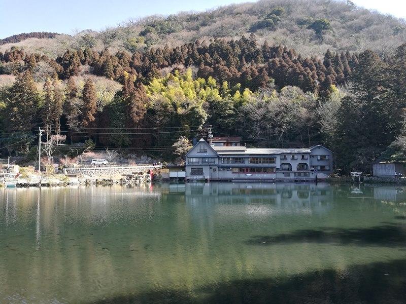 kinrinko12 Yufuin-金鱗湖 由布院第一美景 飄渺夢幻的小池塘