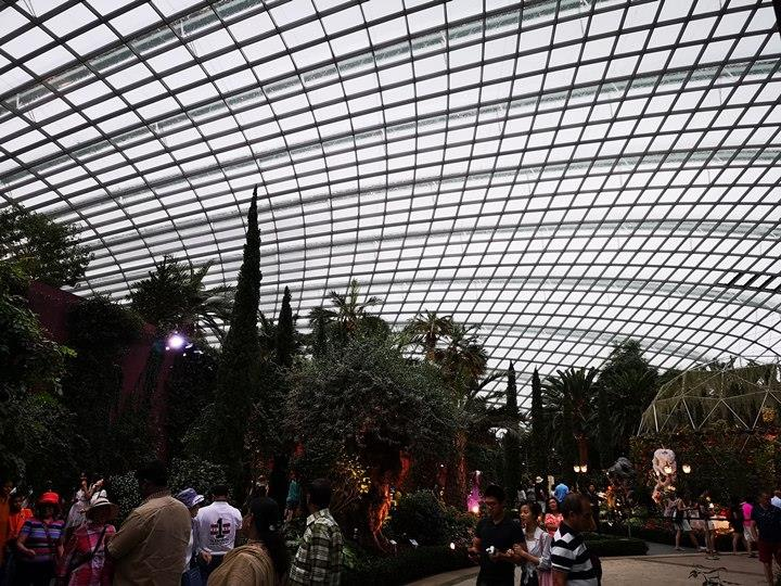 gardens-by-the-bay28 Singapore-Gardens by the Bay之Flower Dome/Cloud Forest新加坡的巨大溫室...盛夏最好的去處