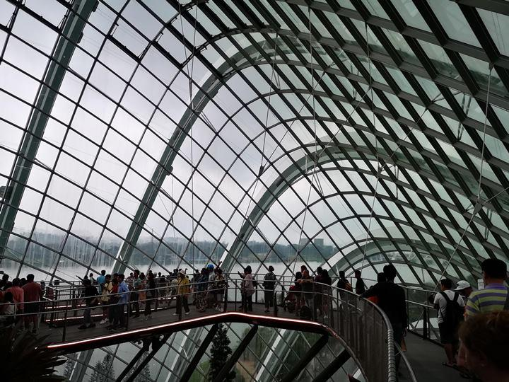 gardens-by-the-bay45 Singapore-Gardens by the Bay之Flower Dome/Cloud Forest新加坡的巨大溫室...盛夏最好的去處