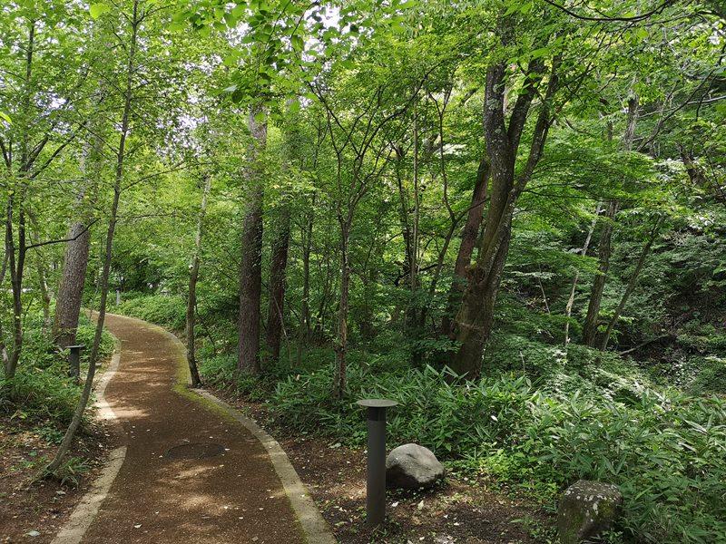 karuizawastreett19 Karuizawa-中輕井澤星野地區 榆樹街小鎮/高原教堂/石之教堂 品一口綠意的優閒雅致