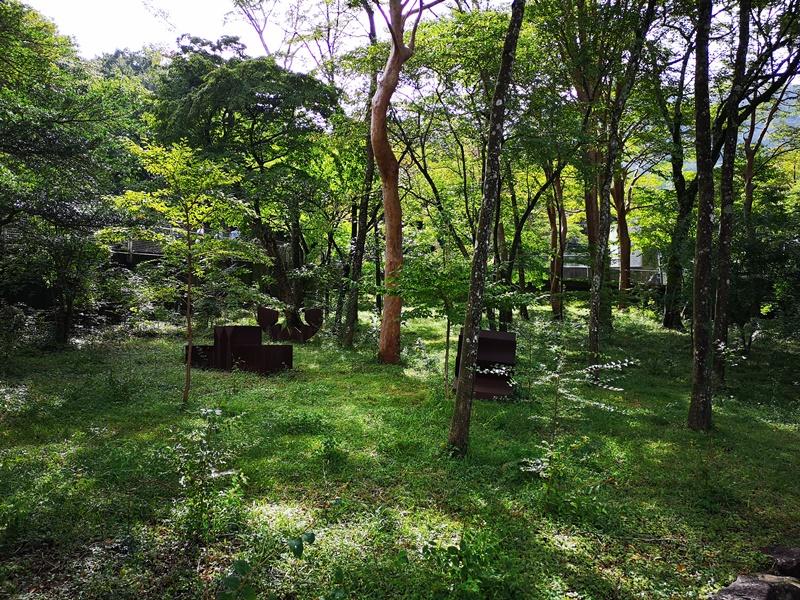 polamuseum21 Hakone-箱根Pola Museum of Art森林中的綠寶石 自然與人文兼具的美術館