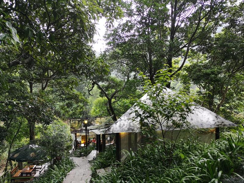 yyteahouse16 文山-貓空邀月茶坊 雨中的清涼 蛙鳴鳥叫的陪伴 一個下午的悠閒
