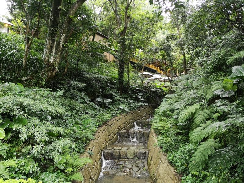 yyteahouse24 文山-貓空邀月茶坊 雨中的清涼 蛙鳴鳥叫的陪伴 一個下午的悠閒