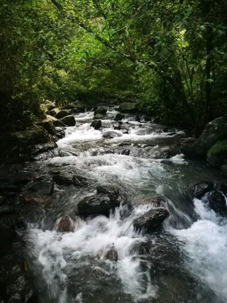 IMG_20160924_173035 礁溪-林美石磐步道 輕輕鬆鬆林間漫步