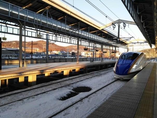 JRPass16 Tokyo-JR East Pass Flexible 5 Day東日本通票 即將改版(兩星期任選5天使用)