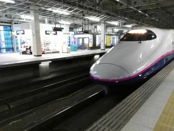 JRPass31 Tokyo-JR East Pass Flexible 5 Day東日本通票 即將改版(兩星期任選5天使用)