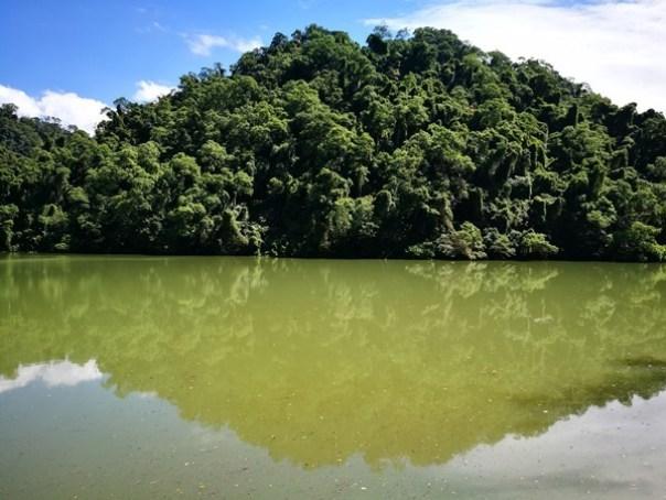 cihu20 大溪-後慈湖 清幽舒適彷彿桃花源的秘境