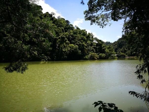 cihu25 大溪-後慈湖 清幽舒適彷彿桃花源的秘境