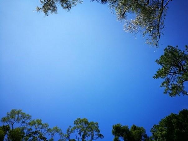 cihu34 大溪-後慈湖 清幽舒適彷彿桃花源的秘境