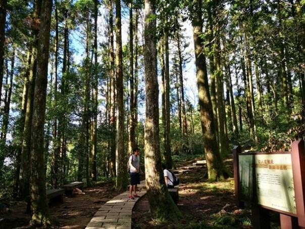 dongyen01 復興-東眼山 藍天白雲青山綠樹...景色壯觀視野開闊...還有美麗的彩虹