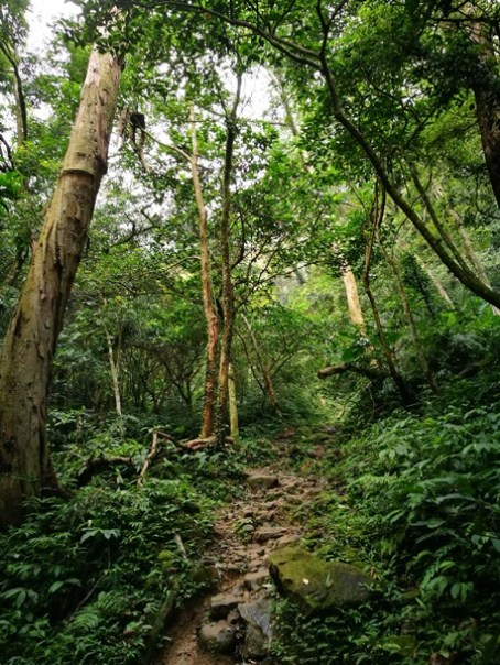 shimenmt16 龍潭-石門山 老少咸宜的小百岳