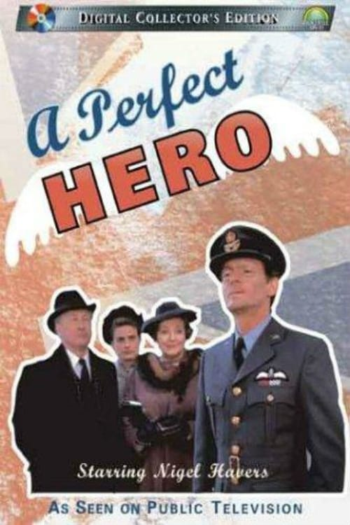 A Perfect Hero series tv complet