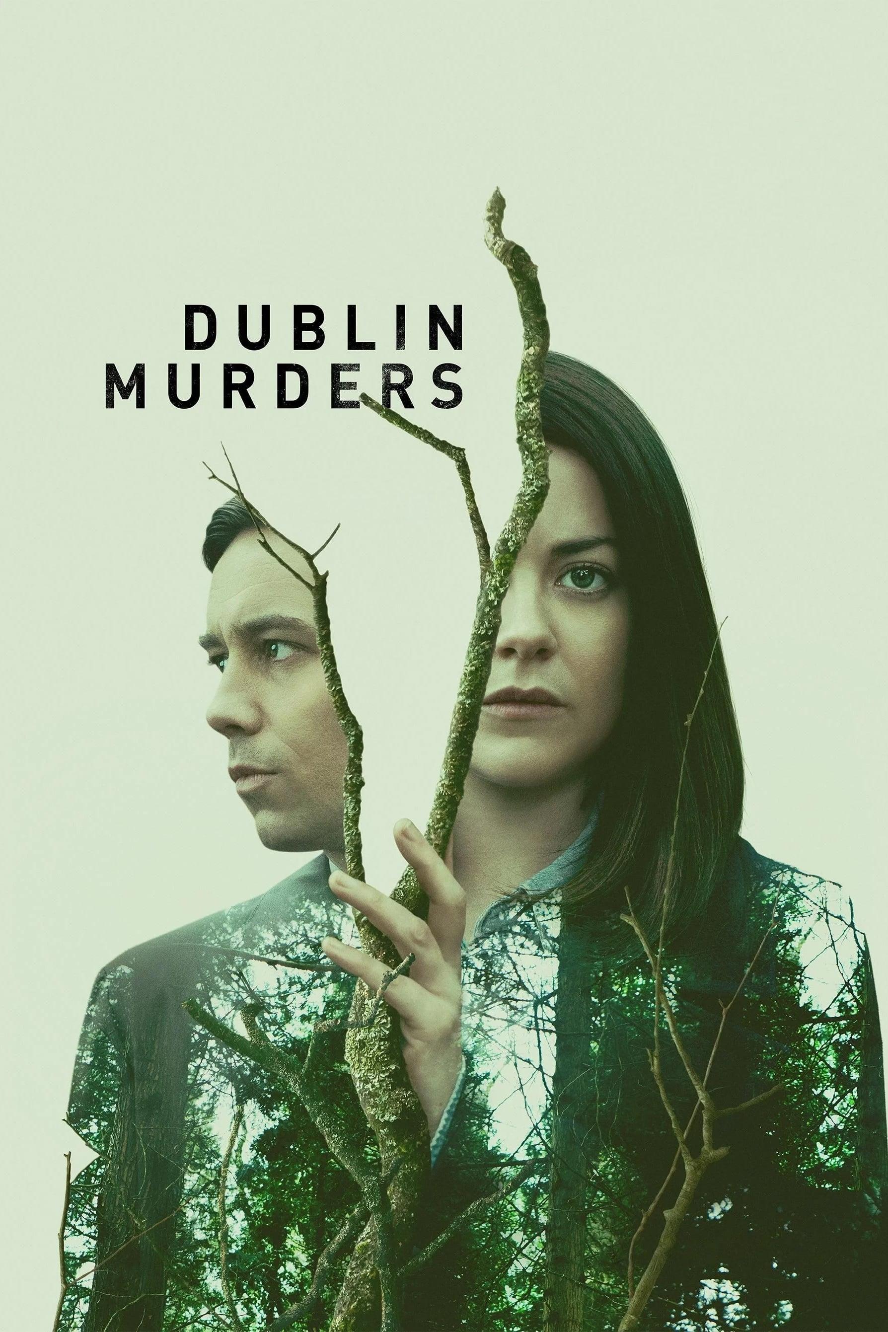Dublin Murders series tv complet
