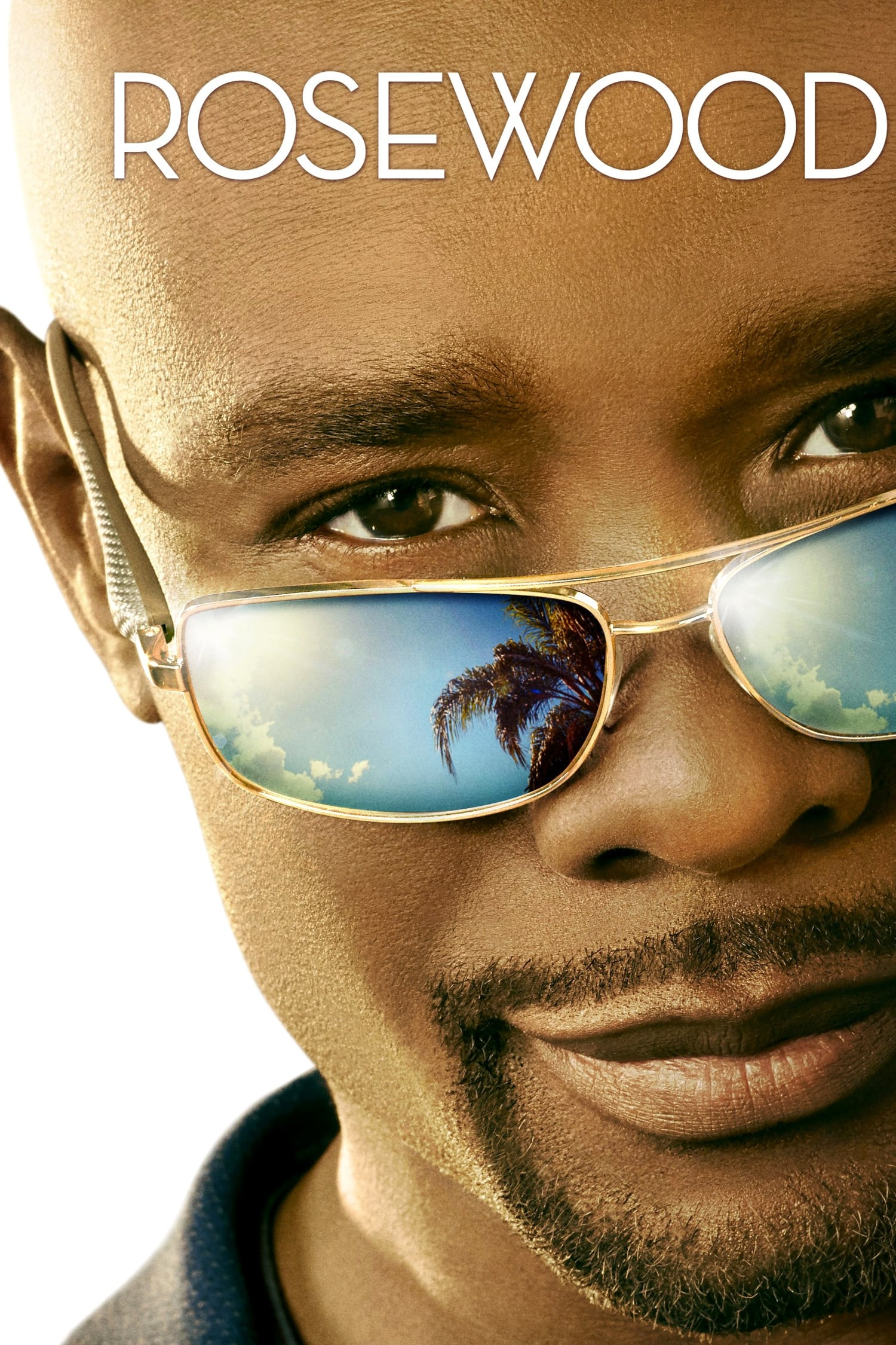 Rosewood series tv complet