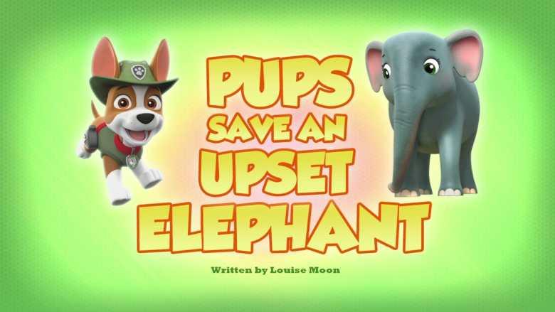 Pups Save an Upset Elephant