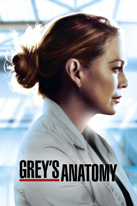 Grey's Anatomy series tv complet