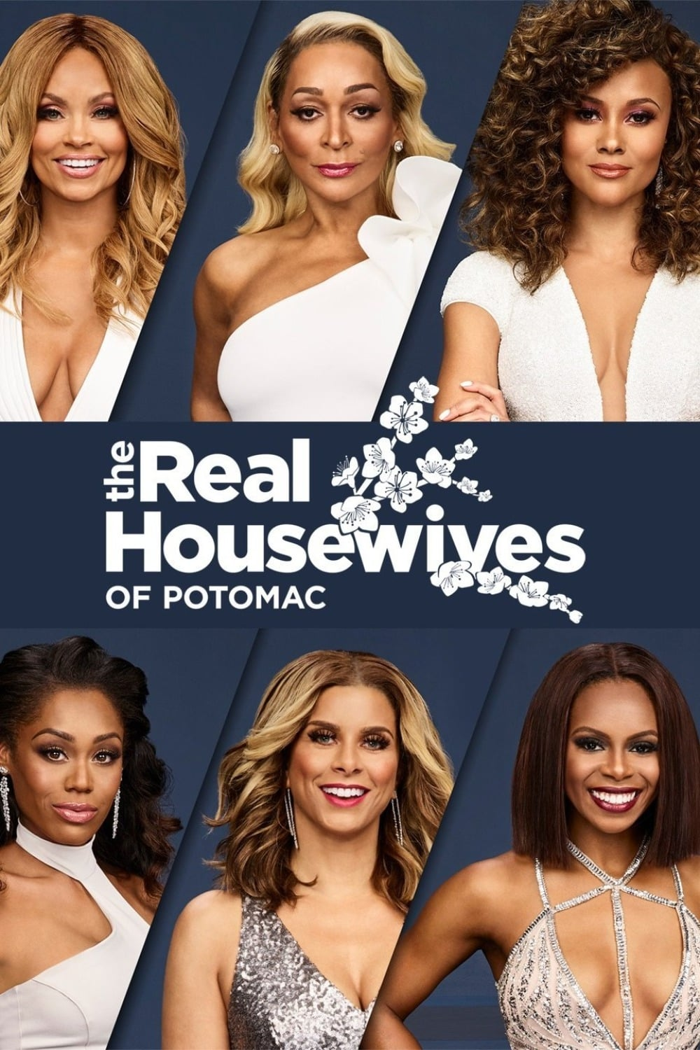 The Real Housewives of Potomac series tv complet
