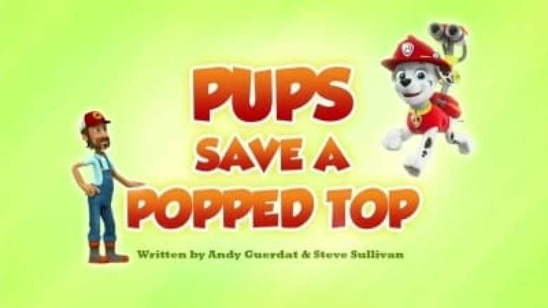 Pups Save a Popped Top