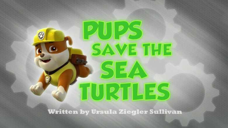 Pups Save the Sea Turtles