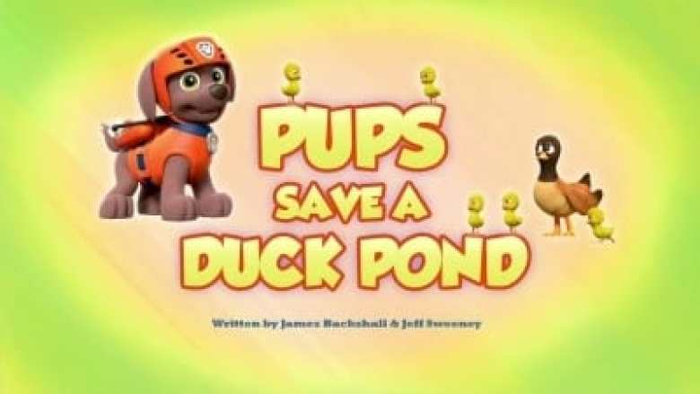 Pups Save a Duck Pond