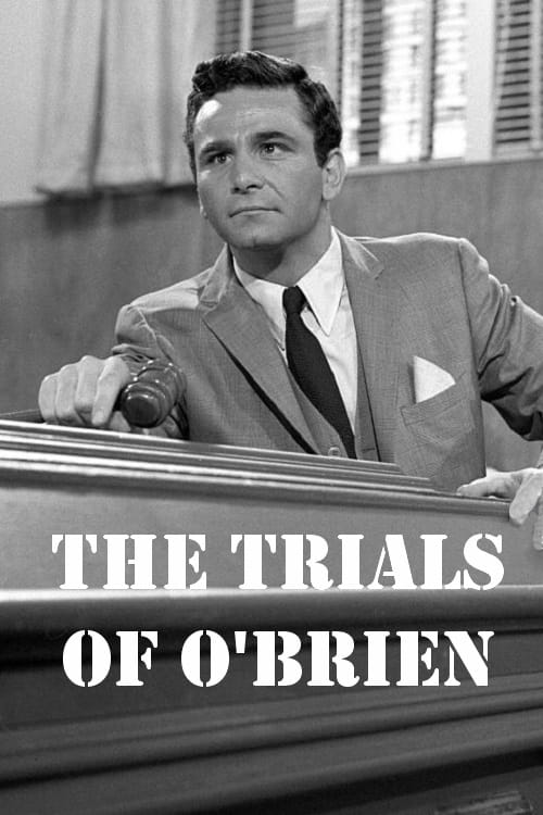 The Trials of O'Brien series tv complet