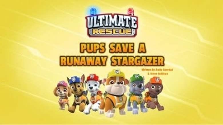Ultimate Rescue: Pups Save a Runaway Stargazer