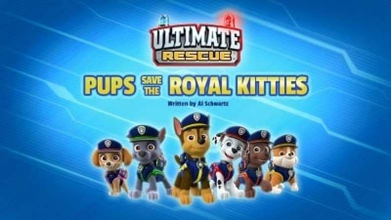 Ultimate Rescue: Pups Save the Royal Kitties