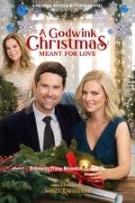 Movie A Godwink Christmas: Meant For Love ( 2019 )