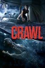 Image for movie Crawl ( 2019 )