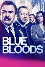 Blue Bloods (2010)