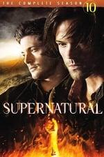 Supernatural (2005) <small> : Season 10</small>