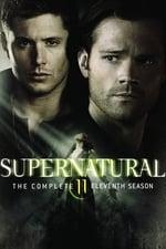 Supernatural (2005) <small> : Season 11</small>