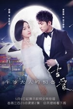 The Love Knot: His Excellency's First Love (2018)