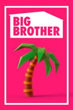 Movie Big Brother ( 2000 )