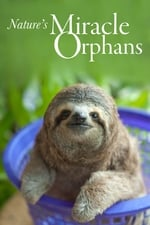 Nature's Miracle Orphans (2014)