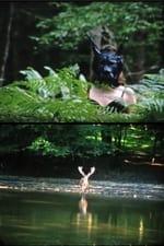 Movie Summerland (Le Pays de l'Été) ( 2015 )