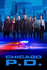 Movie Chicago P.D. ( 2014 )