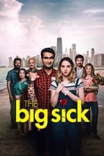 Movie The Big Sick ( 2017 )